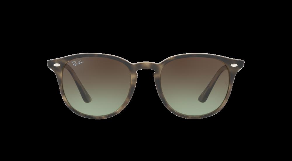 gafas de sol RAY-BAN RB 4259 731/E8