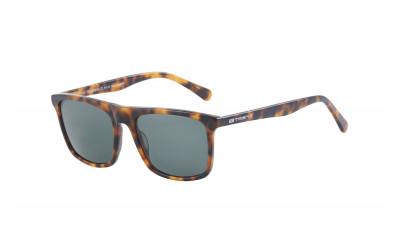 gafas de sol TREND S154 C2